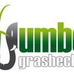 jumbograshecke-logo