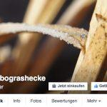 jumbo-auf-facebook