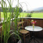 Gestaltungsideen für Terrasse und Balkon, Gräser