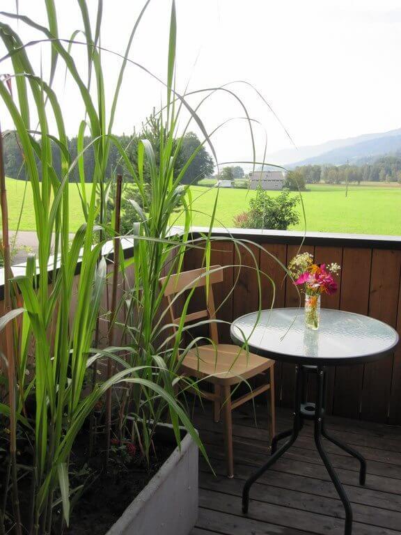 Gartengestaltungsidee für den Balkon bzw. Terrases mit Jumbograshecke